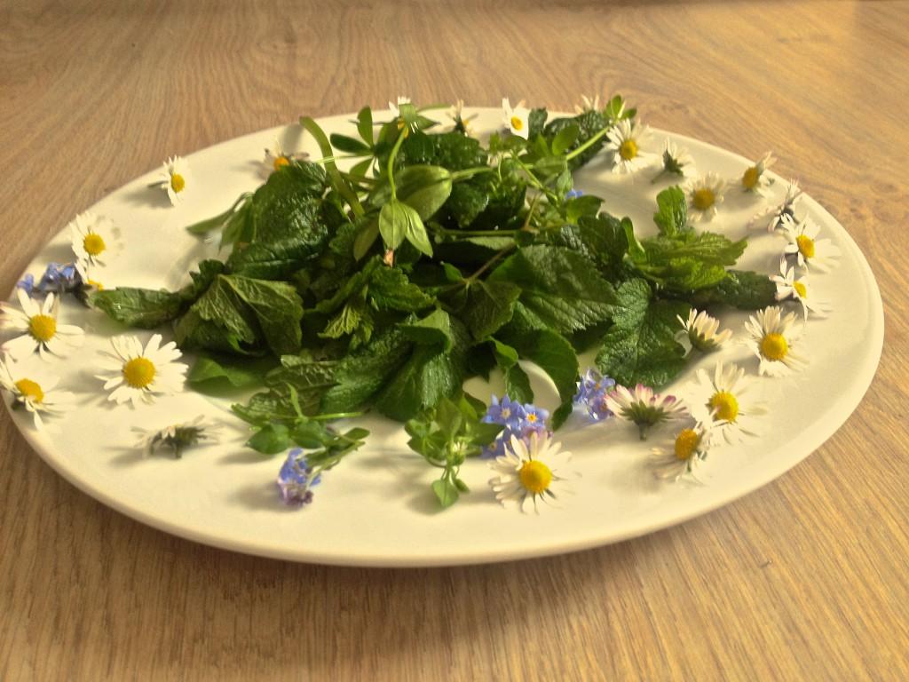 Frühlingskräuter auf einem Teller (Copyright: wilderwegesrand.de)