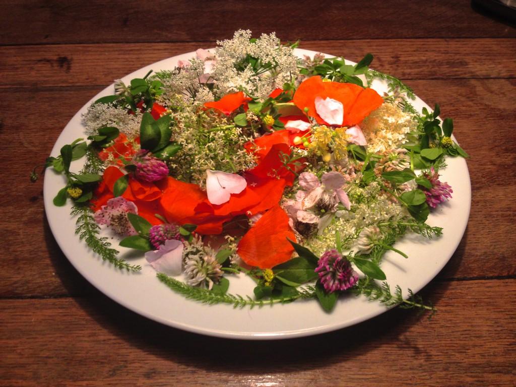 Blütentee aus Wildkräutern und Wildblumen des Juni (Copyright: wilderwegesrand.de)
