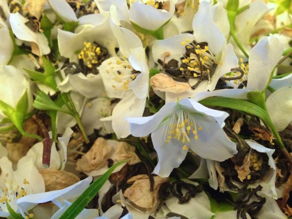 Jasminblüten mit Grüntee gemischt (Copyright: wilderwegesrand.de)