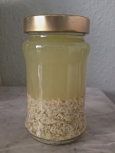 Seifenlauge aus Rosskastanien (Copyright: wilderwegesrand.de)